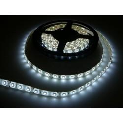 LED pásik 4.8W, 60 LED, zaliaty IP 50 economy - Studená biela