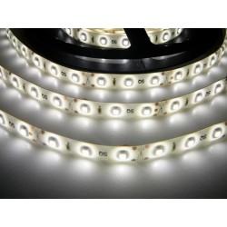 LED pásik 4.8W, 60 LED, Zaliaty IP 50 - Denná biela