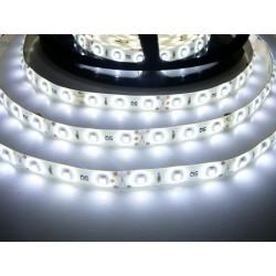 LED pásik 4.8W, 60 LED, Zaliaty IP 50 - Studená biela