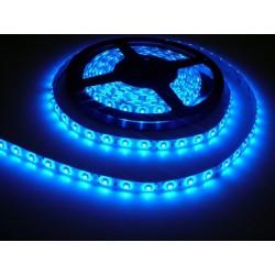 LED pásik 4.8W, 60 LED, Zaliaty IP 50 - Modrý
