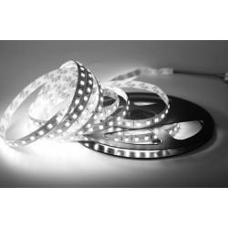 LED pásik 12W, 60 LED, Nezaliaty IP 20 - Studená biela Avide