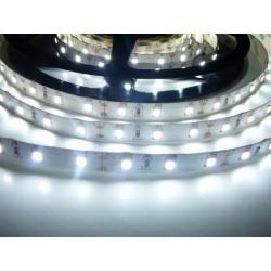 LED pásik 12W, 60 LED, Nezaliaty IP 20 - Studená biela