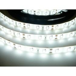 LED pásik 12W, 60 LED, Zaliaty IP 50 - Studená biela