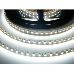 LED pásik 9.6W, 120 LED, Nezaliaty IP 20 - Studená biela