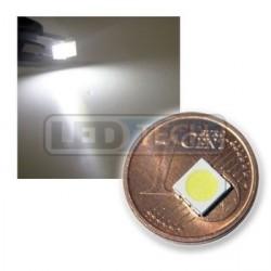 LED smd dióda 5050 biela 7040mcd 120°